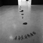 Yana Sterbak. Installation view. East Gallery. Photo: Peter MacCallum