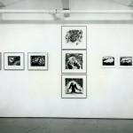 Sandra Meigs. Installation view. Photo: Peter MacCallum