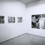 Brian Scott. Installation view. West Gallery. Photo: Peter MacCallum