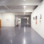 Group Show. Gallery view. Photo: Peter MacCallum.