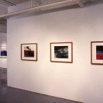 From left to right: Gordon Laird, Camel., Rock., Tornado., Fuchsialcescape. Installation view. Photo: Peter MacCallum