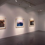 From left to right: Gordon Laird, Camel., Rock., Rhino., Spaghetti River. Installation view. Photo: Peter MacCallum