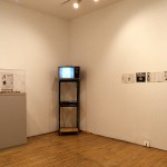 Project Room. Installation view. Photography by Peter MacCullum.