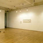 Luanne Martineau. Installation view. Main Gallery. Photography by Cheryl O'Brien.