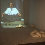 Yoshua Okon. Parking Lotus. Installation view. Photographs by Simon Glass.