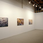 Michelle Forsyth. Installation View. Photography by Brian Piitz.