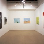 Samantha Rees. Installation view. Back Gallery. Photography by Brian Piitz.