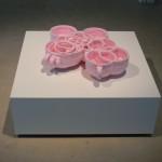 Kirstan Horton. Copo, 2005, styrofoam, laser prints. Installation view. Front Gallery.