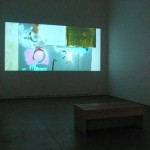 Alex Hubbard. Installation view. Back Gallery.