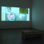 Alex Hubbard. Installation view. Back Gallery.
