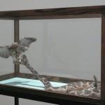 Taku Dazai. Installation view. Back Gallery.