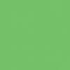 CAG_logo_green_